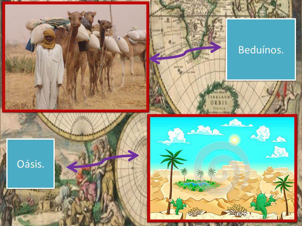 Beduínos. Oásis.