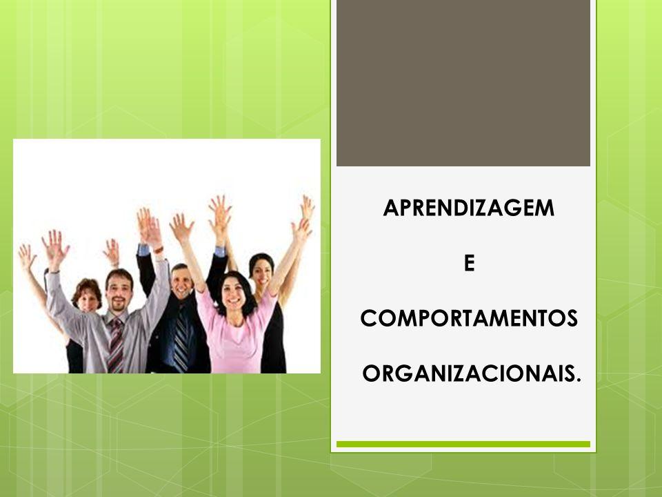APRENDIZAGEM E COMPORTAMENTOS ORGANIZACIONAIS.