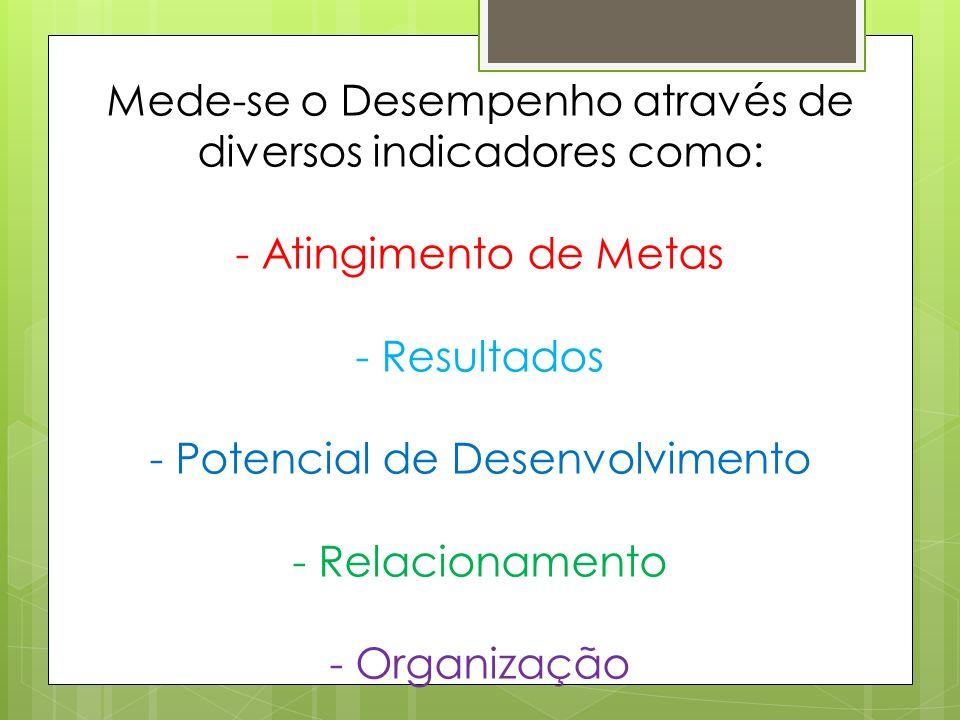 Mede-se o Desempenho através de diversos indicadores como: - Atingimento de Metas - Resultados - Potencial de Desenvolvimento - Relacionamento - Organização