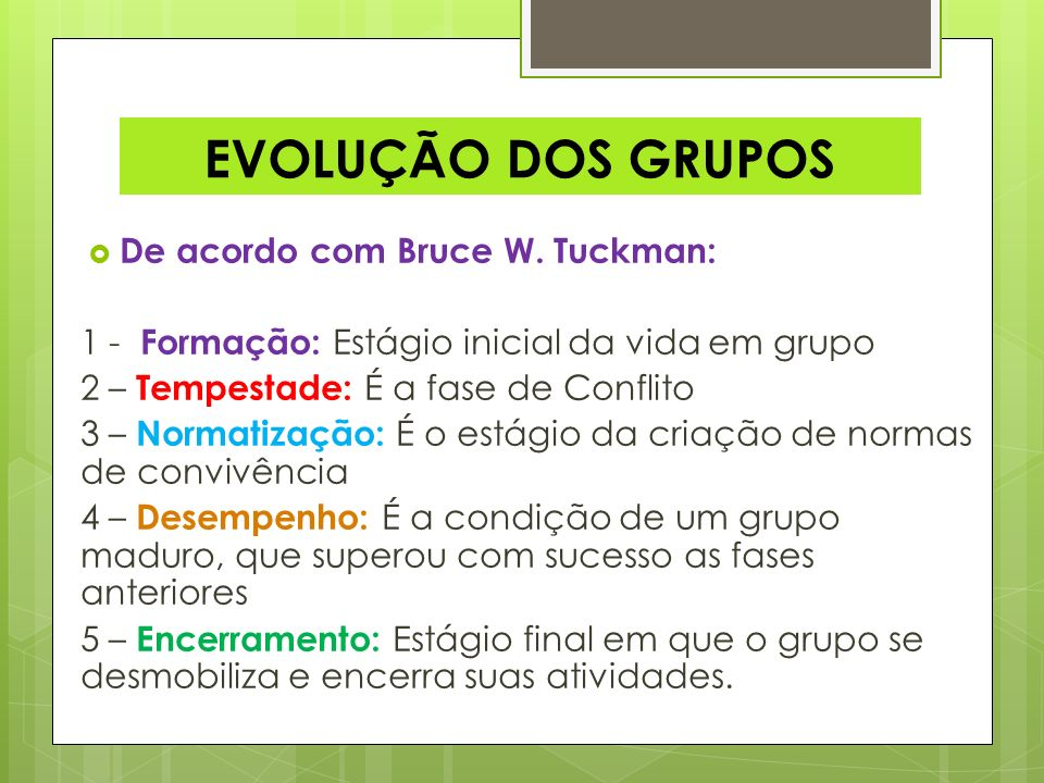 EVOLUÇÃO DOS GRUPOS De acordo com Bruce W. Tuckman: