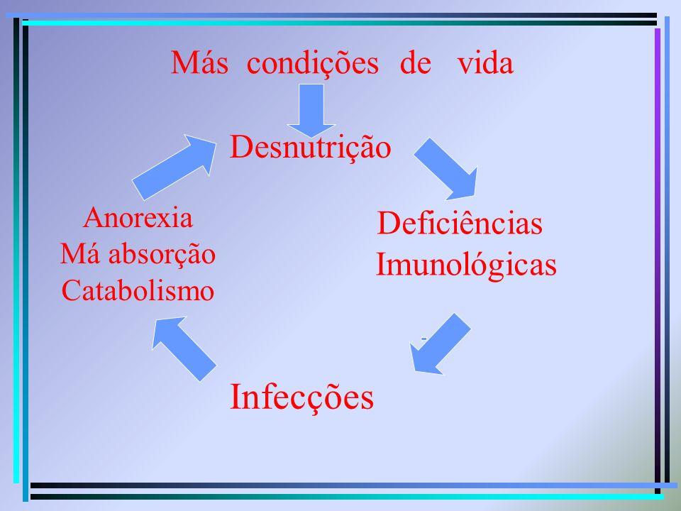 Infecções Más condições de vida Desnutrição Deficiências Imunológicas