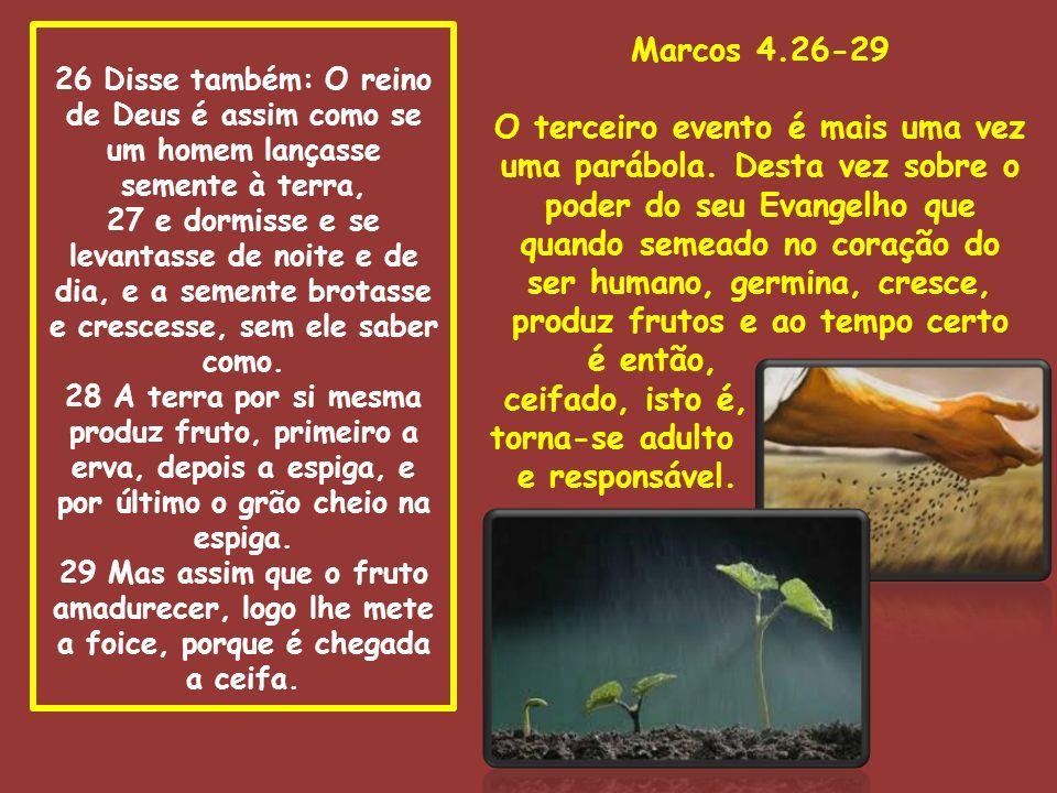 26 Disse também: O reino de Deus é assim como se um homem lançasse semente à terra, 27 e dormisse e se levantasse de noite e de dia, e a semente brotasse e crescesse, sem ele saber como. 28 A terra por si mesma produz fruto, primeiro a erva, depois a espiga, e por último o grão cheio na espiga. 29 Mas assim que o fruto amadurecer, logo lhe mete a foice, porque é chegada a ceifa.