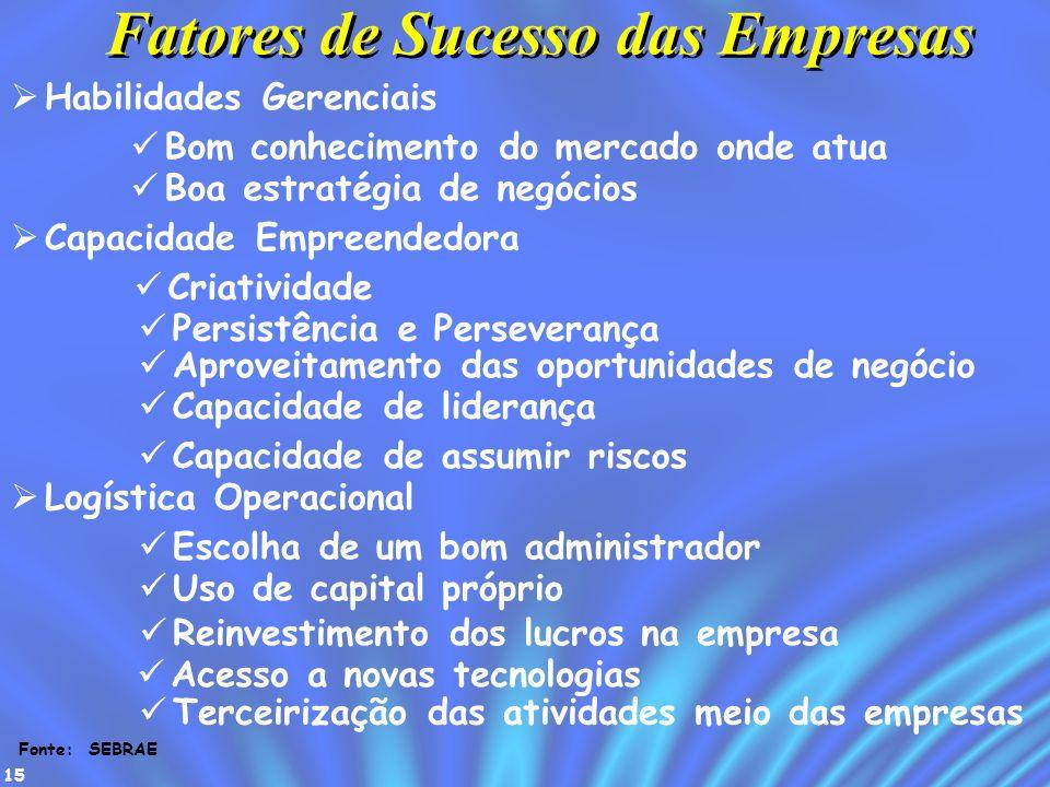 Fatores de Sucesso das Empresas