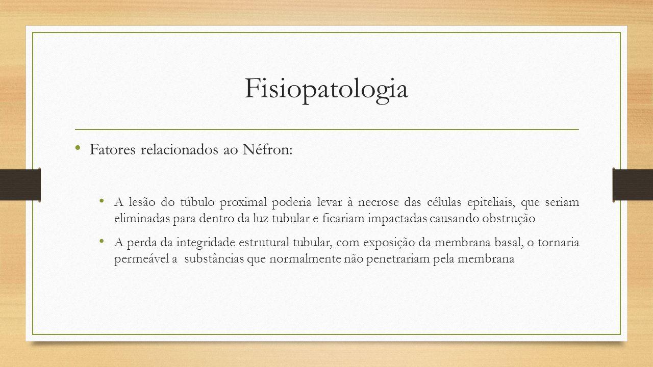 Fisiopatologia Fatores relacionados ao Néfron: