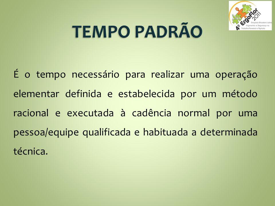TEMPO PADRÃO