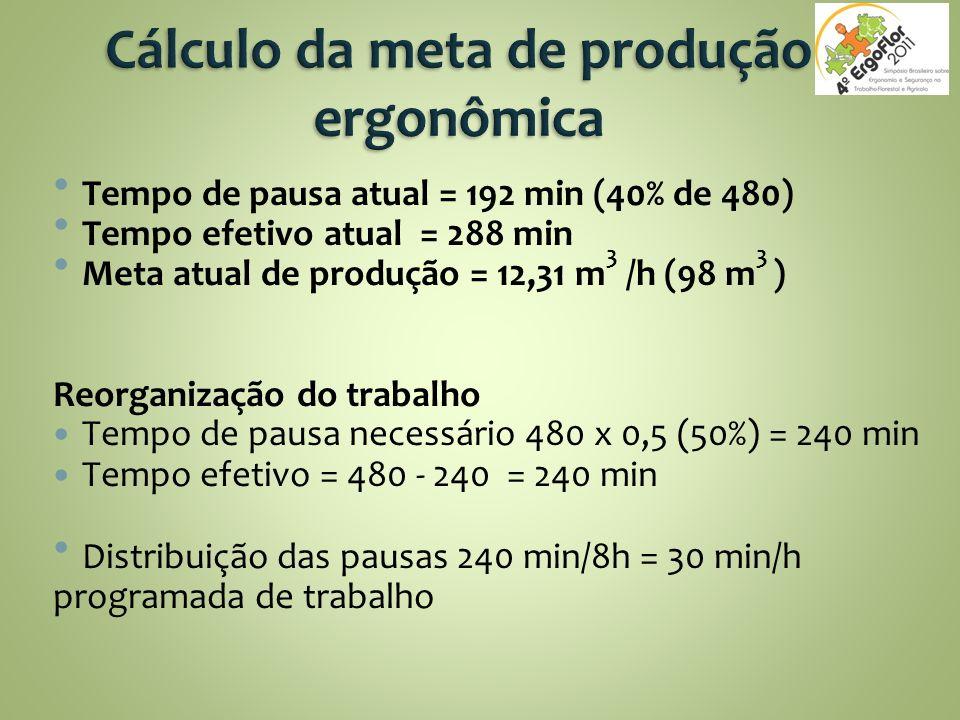 Cálculo da meta de produção ergonômica