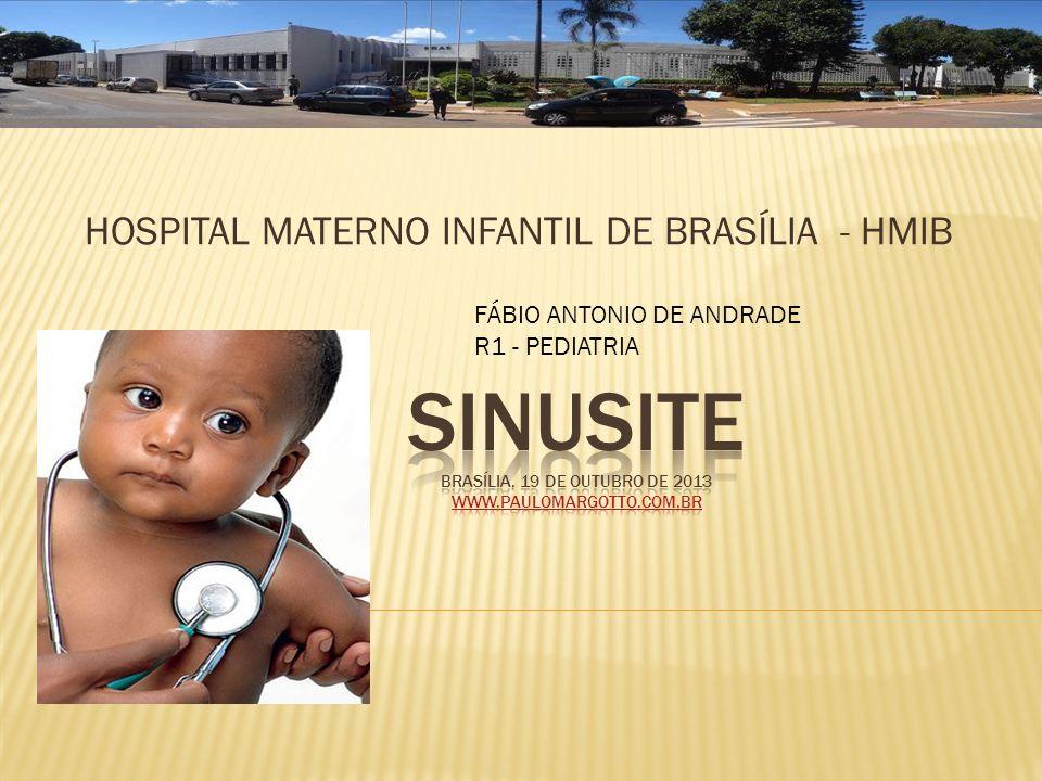 Sinusite Brasília, 19 de outubro de 2013 www.paulomargotto.com.br