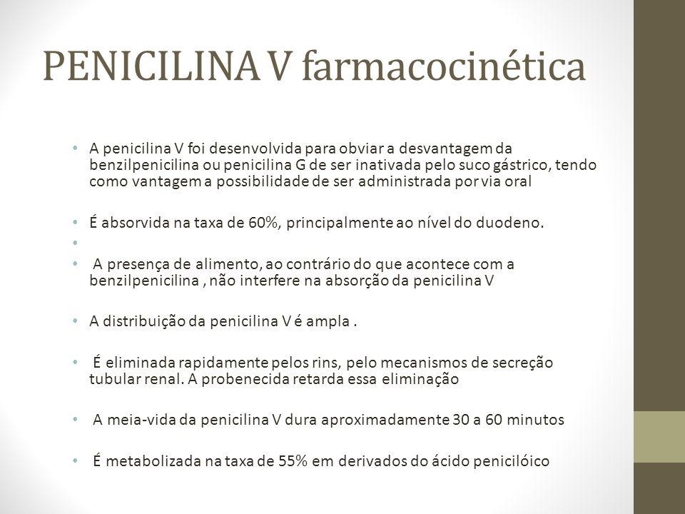 PENICILINA V farmacocinética