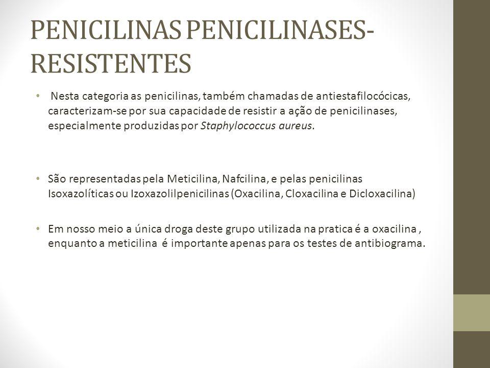 PENICILINAS PENICILINASES- RESISTENTES