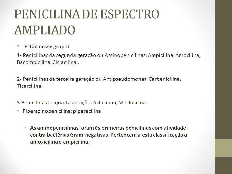 PENICILINA DE ESPECTRO AMPLIADO