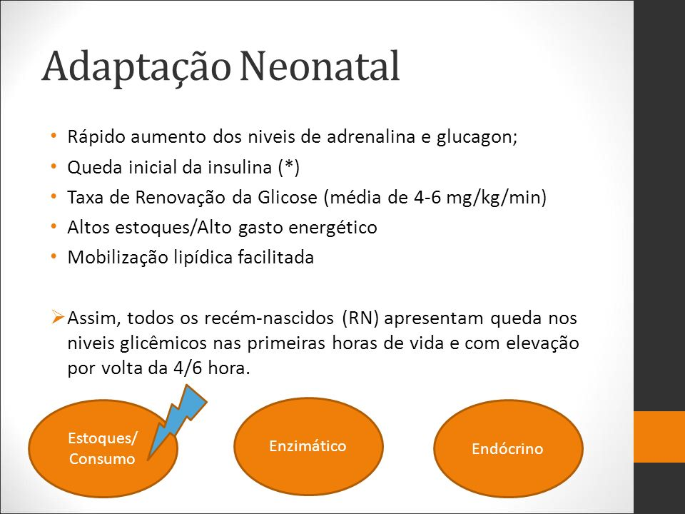 Adaptação Neonatal Rápido aumento dos niveis de adrenalina e glucagon;