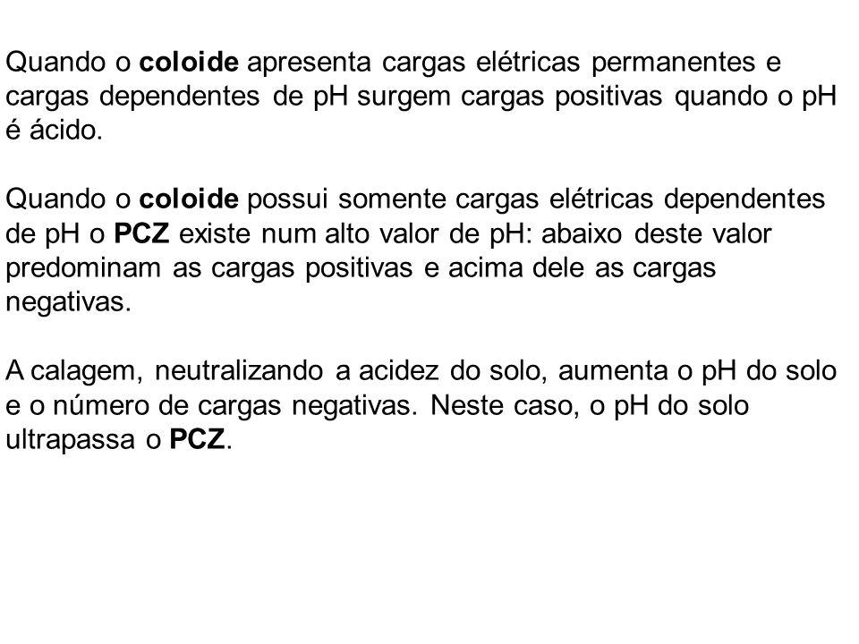 Quando o coloide apresenta cargas elétricas permanentes e cargas dependentes de pH surgem cargas positivas quando o pH é ácido.
