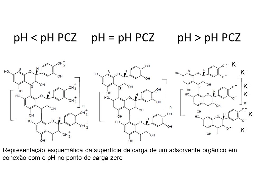 pH < pH PCZ pH = pH PCZ pH > pH PCZ