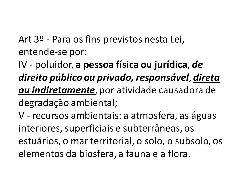 Art 3º - Para os fins previstos nesta Lei, entende-se por: