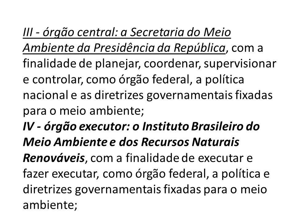 III - órgão central: a Secretaria do Meio Ambiente da Presidência da República, com a finalidade de planejar, coordenar, supervisionar e controlar, como órgão federal, a política nacional e as diretrizes governamentais fixadas para o meio ambiente;