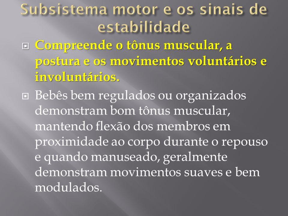 Compreende o tônus muscular, a postura e os movimentos voluntários e involuntários.