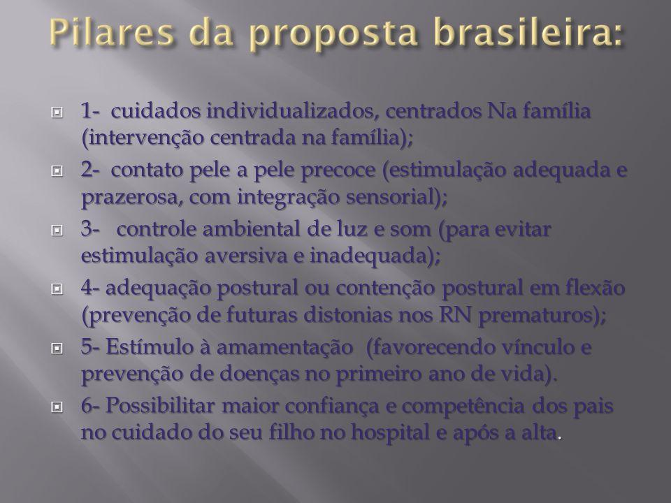 1- cuidados individualizados, centrados Na família (intervenção centrada na família);