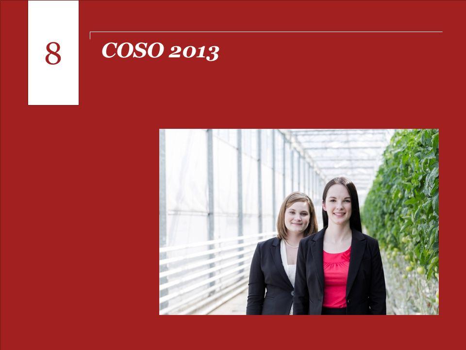 8 COSO 2013