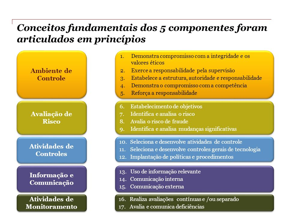 Conceitos fundamentais dos 5 componentes foram articulados em princípios