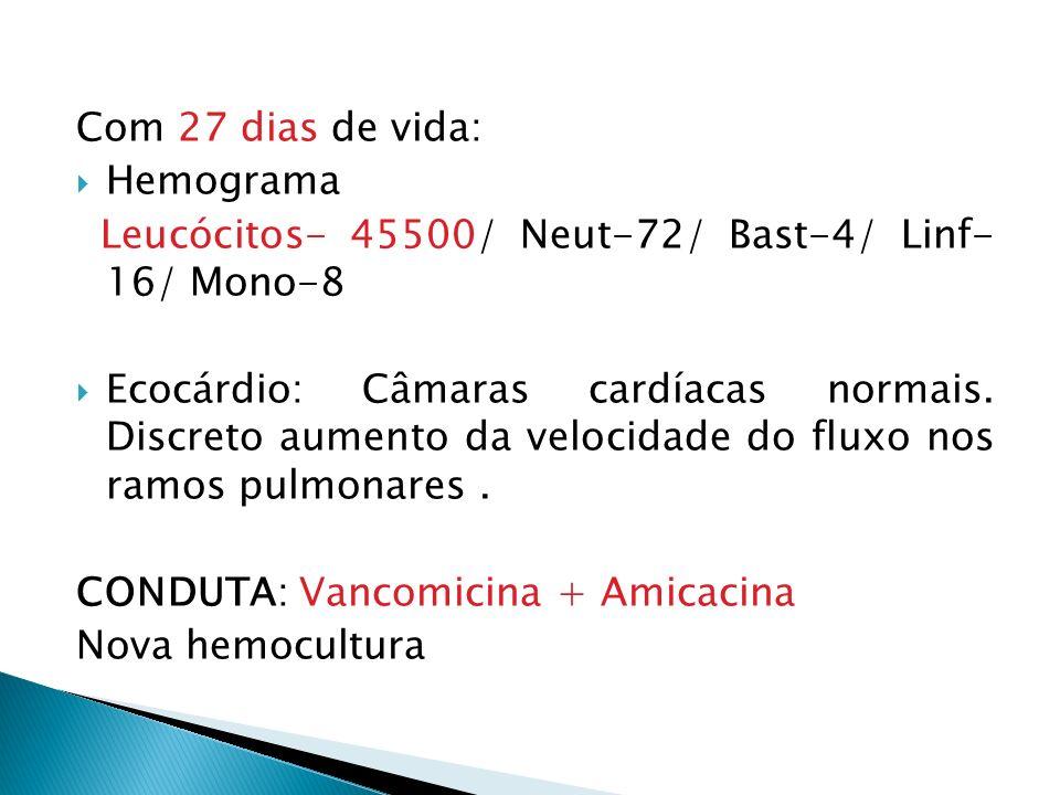 Com 27 dias de vida: Hemograma. Leucócitos- 45500/ Neut-72/ Bast-4/ Linf- 16/ Mono-8.