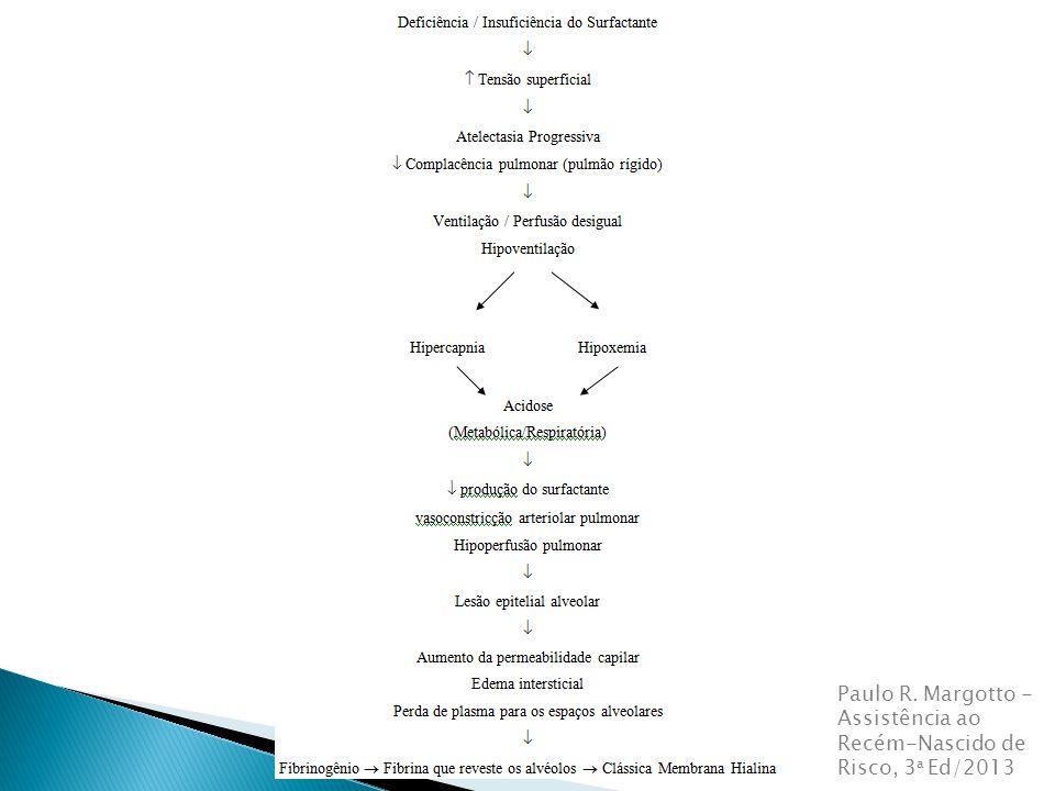 Paulo R. Margotto - Assistência ao Recém-Nascido de Risco, 3a Ed/2013