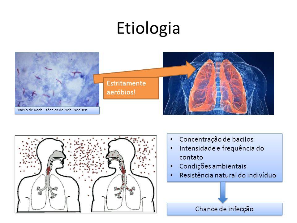 Etiologia Estritamente aeróbios! Concentração de bacilos