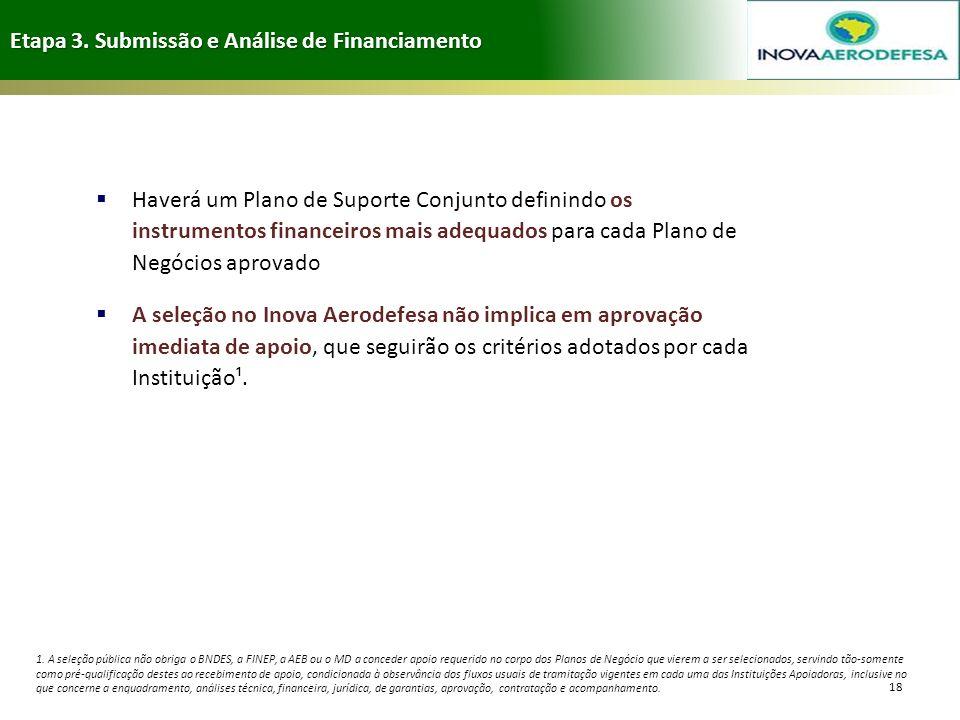 Etapa 3. Submissão e Análise de Financiamento