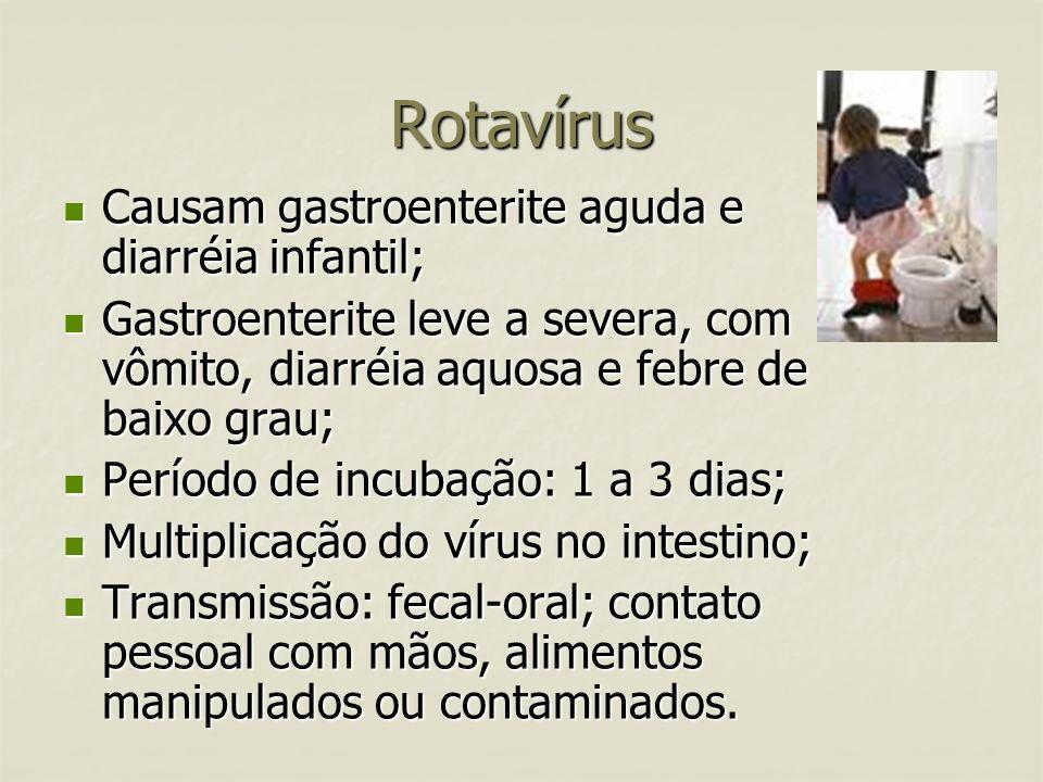 Rotavírus Causam gastroenterite aguda e diarréia infantil;