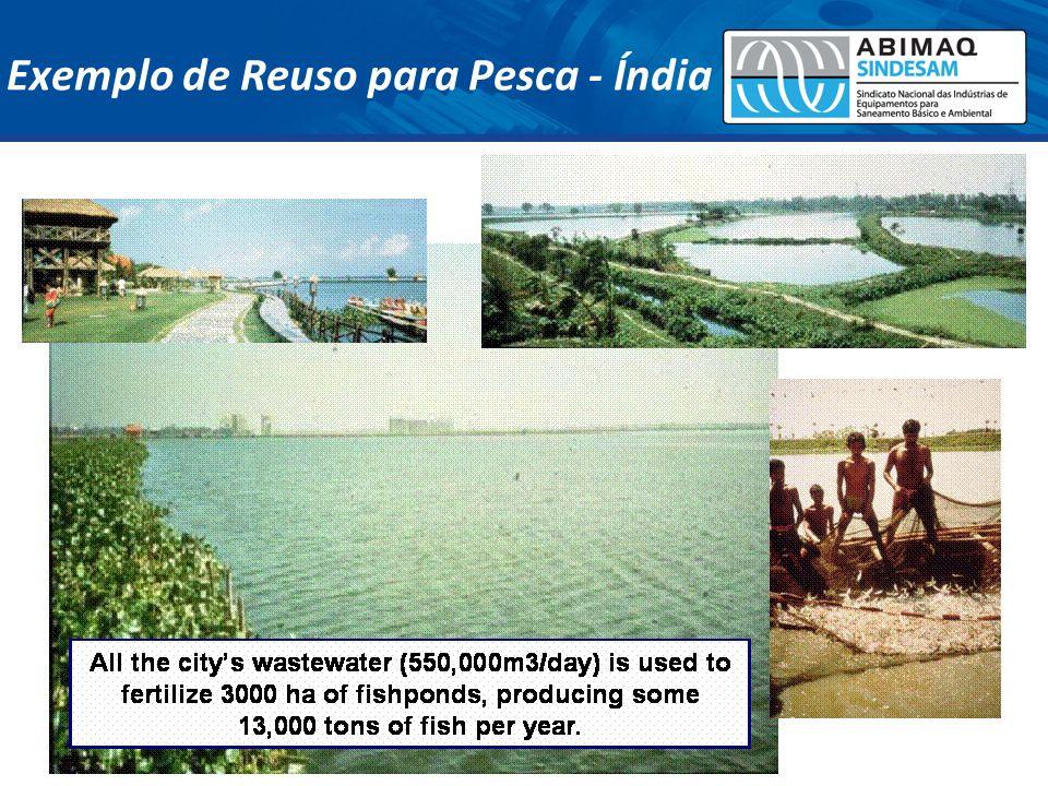 Exemplo de Reuso para Pesca - Índia