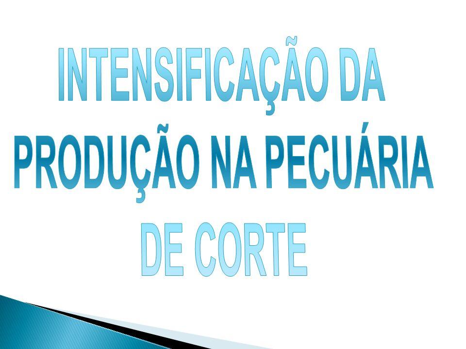 INTENSIFICAÇÃO DA PRODUÇÃO NA PECUÁRIA DE CORTE