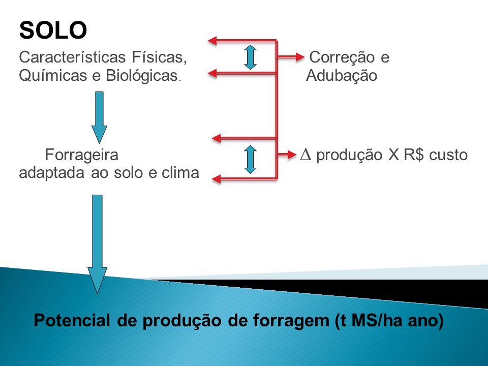 SOLO Potencial de produção de forragem (t MS/ha ano)
