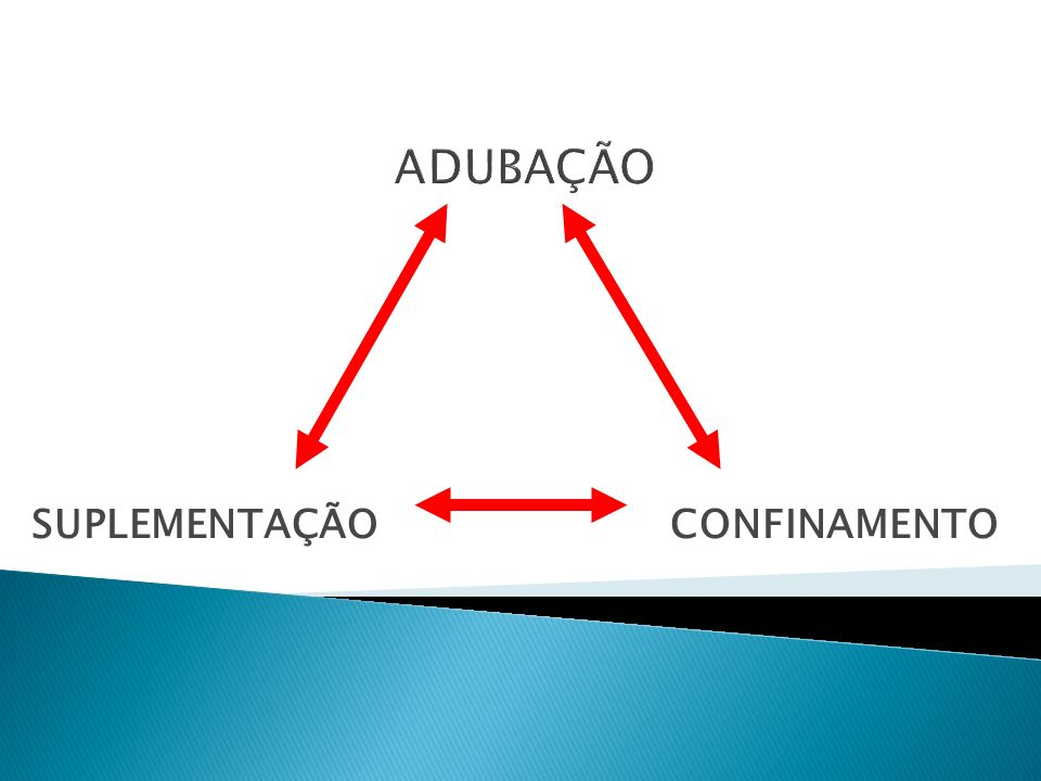 SUPLEMENTAÇÃO CONFINAMENTO