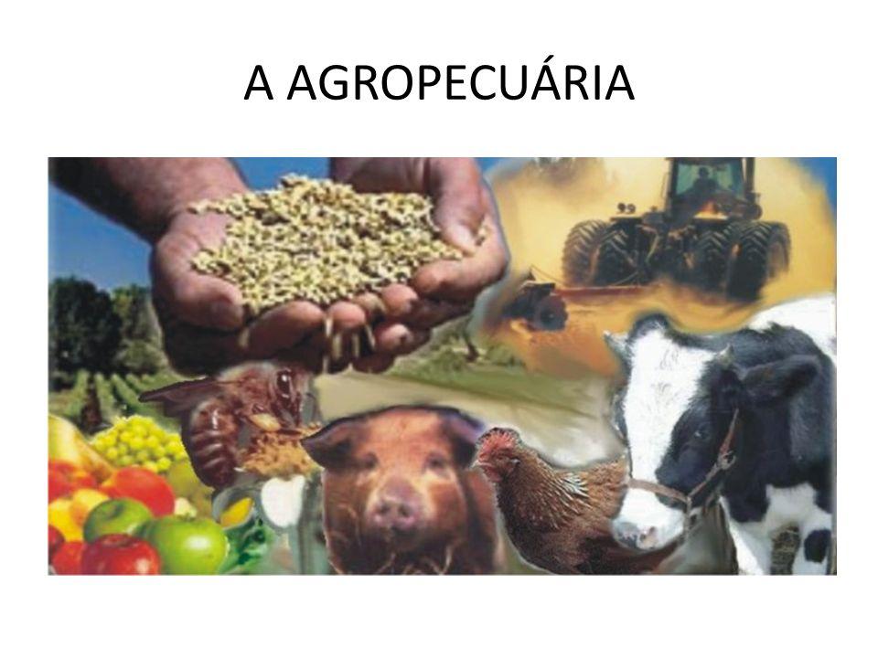 A AGROPECUÁRIA