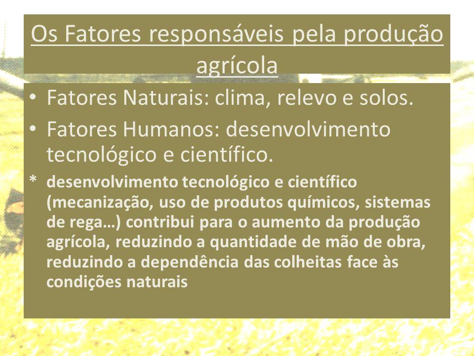 Os Fatores responsáveis pela produção agrícola