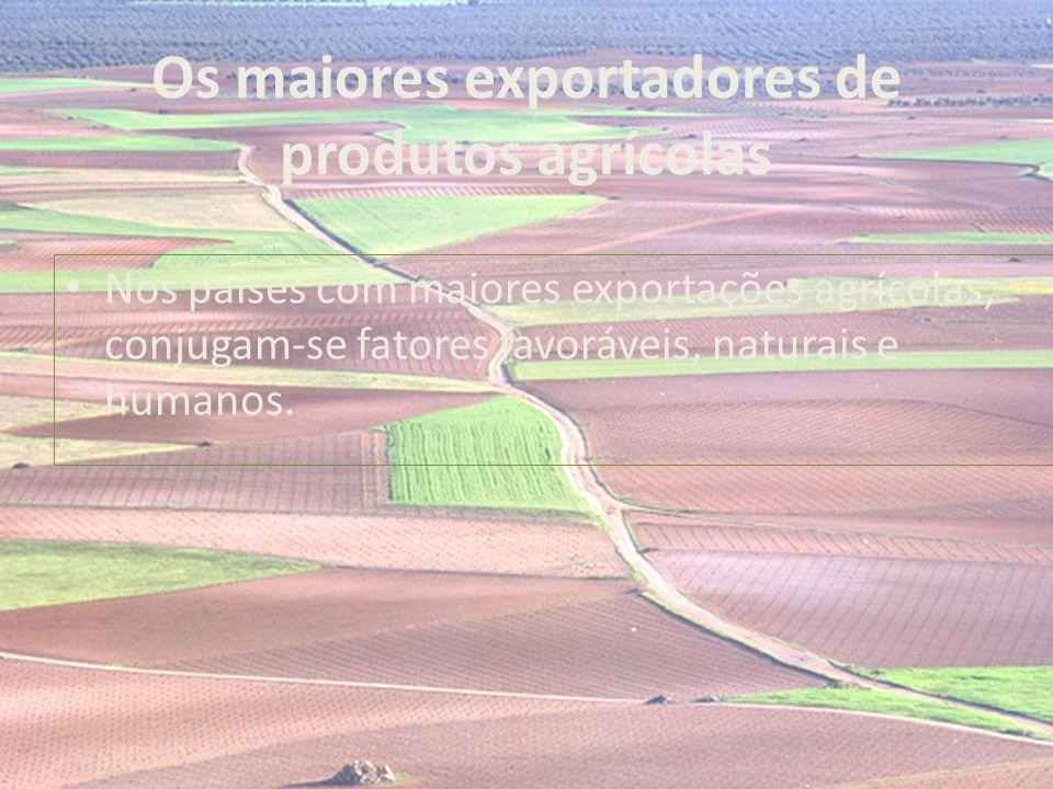 Os maiores exportadores de produtos agrícolas