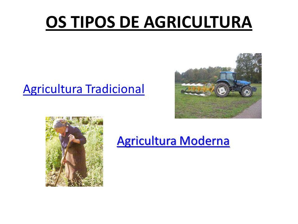 OS TIPOS DE AGRICULTURA
