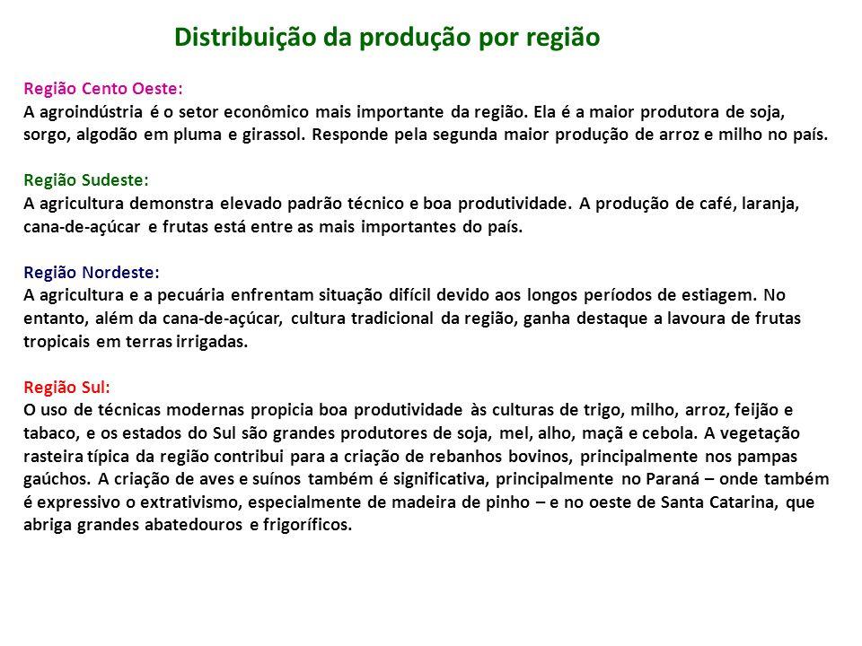 Distribuição da produção por região