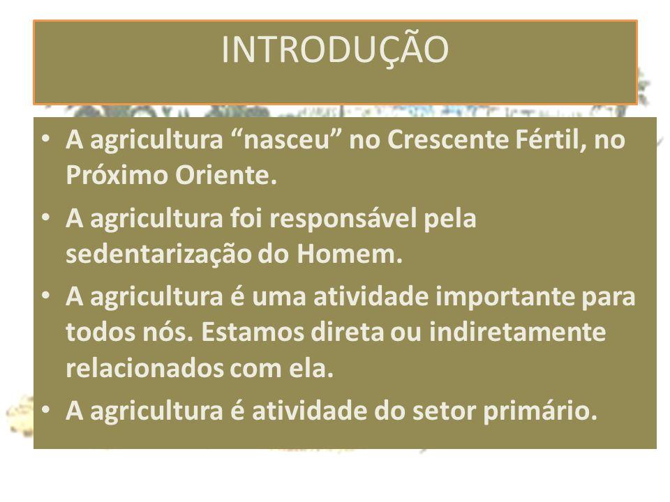 INTRODUÇÃO A agricultura nasceu no Crescente Fértil, no Próximo Oriente. A agricultura foi responsável pela sedentarização do Homem.