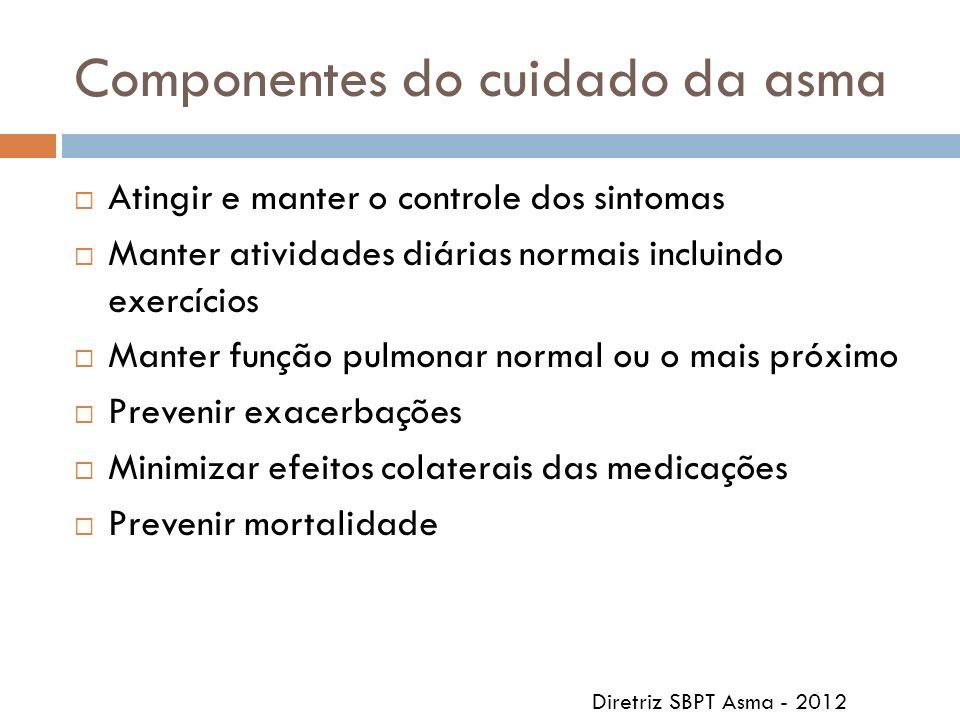 Componentes do cuidado da asma