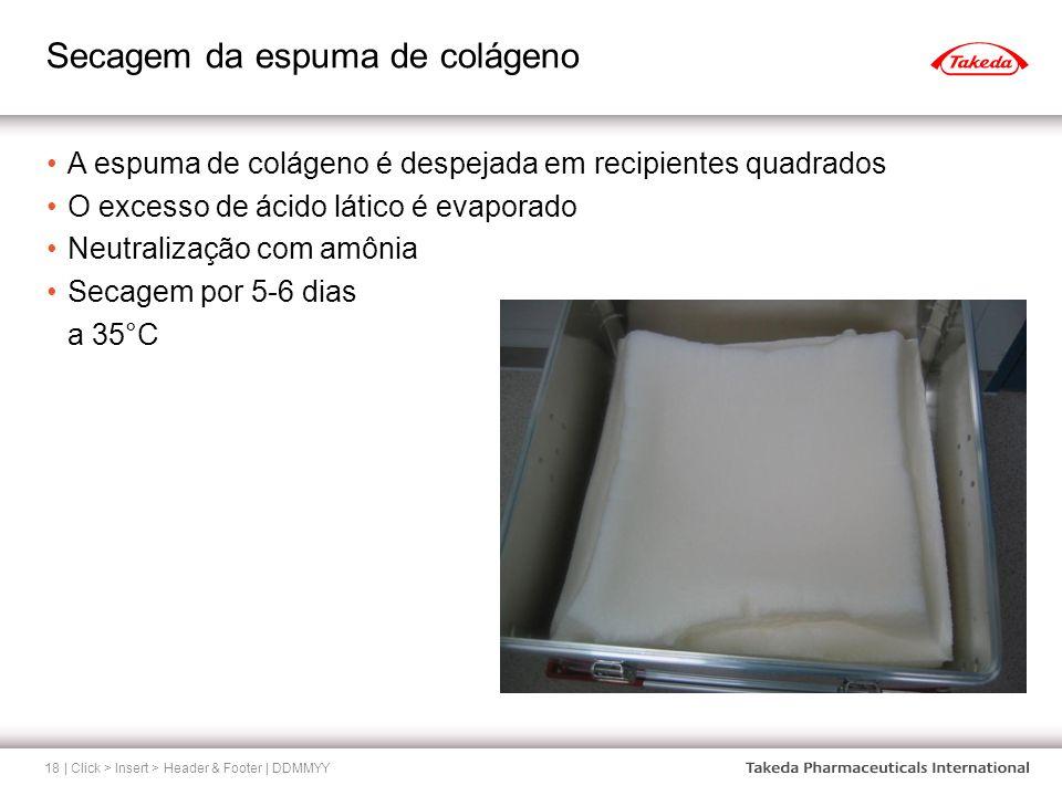 Secagem da espuma de colágeno