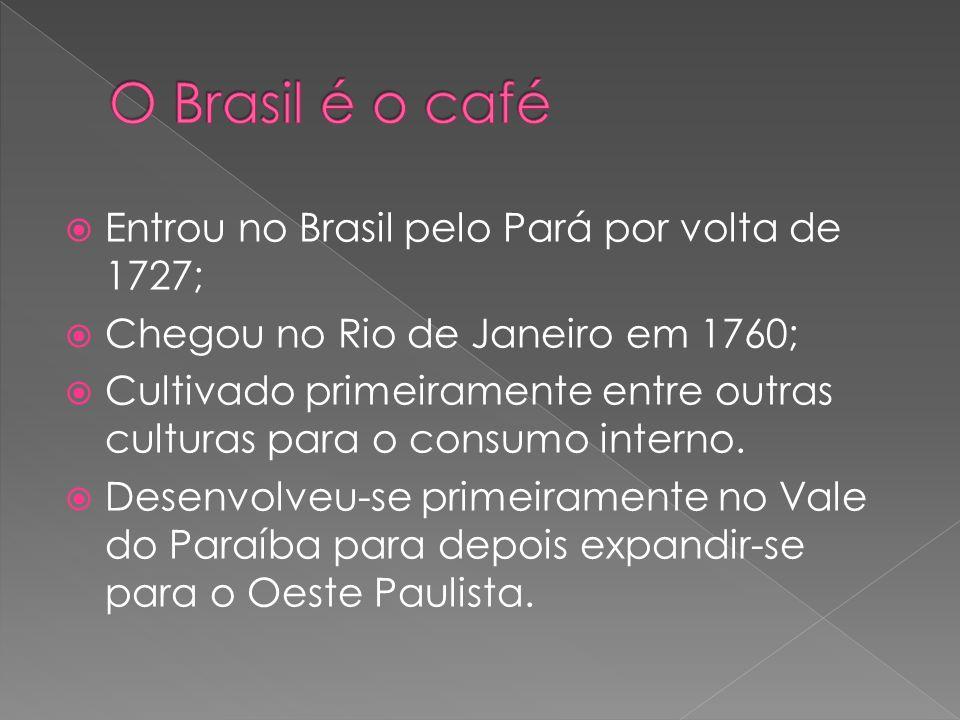 O Brasil é o café Entrou no Brasil pelo Pará por volta de 1727;