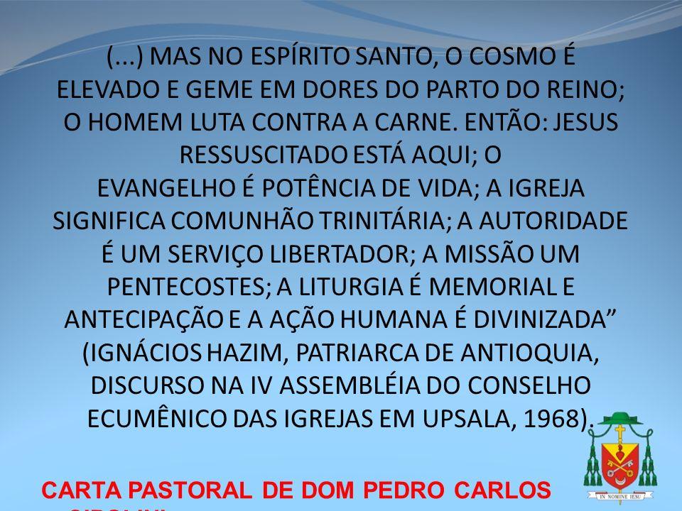 (...) MAS NO ESPÍRITO SANTO, O COSMO É ELEVADO E GEME EM DORES DO PARTO DO REINO; O HOMEM LUTA CONTRA A CARNE. ENTÃO: JESUS RESSUSCITADO ESTÁ AQUI; O