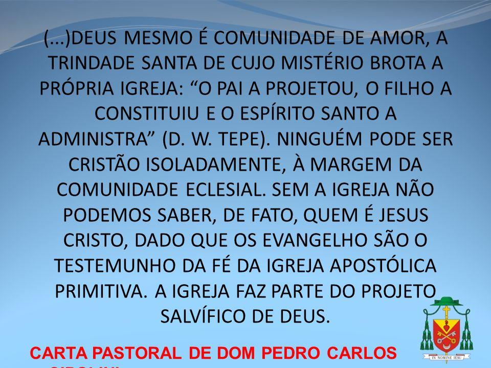 (...)DEUS MESMO É COMUNIDADE DE AMOR, A TRINDADE SANTA DE CUJO MISTÉRIO BROTA A PRÓPRIA IGREJA: O PAI A PROJETOU, O FILHO A CONSTITUIU E O ESPÍRITO SANTO A ADMINISTRA (D. W. TEPE). NINGUÉM PODE SER CRISTÃO ISOLADAMENTE, À MARGEM DA COMUNIDADE ECLESIAL. SEM A IGREJA NÃO PODEMOS SABER, DE FATO, QUEM É JESUS CRISTO, DADO QUE OS EVANGELHO SÃO O TESTEMUNHO DA FÉ DA IGREJA APOSTÓLICA PRIMITIVA. A IGREJA FAZ PARTE DO PROJETO SALVÍFICO DE DEUS.