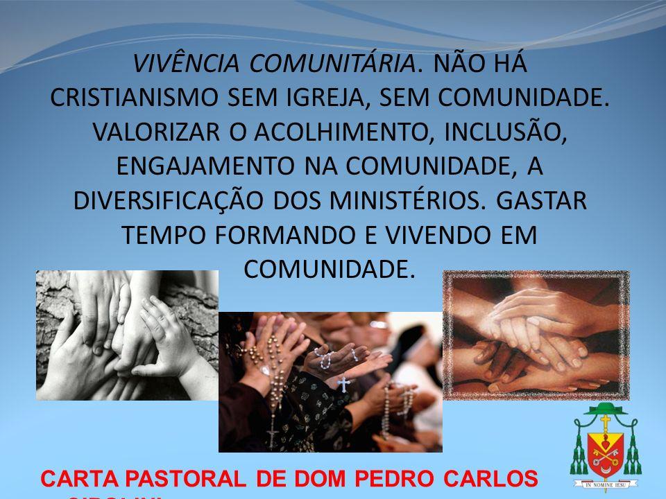 VIVÊNCIA COMUNITÁRIA. NÃO HÁ CRISTIANISMO SEM IGREJA, SEM COMUNIDADE
