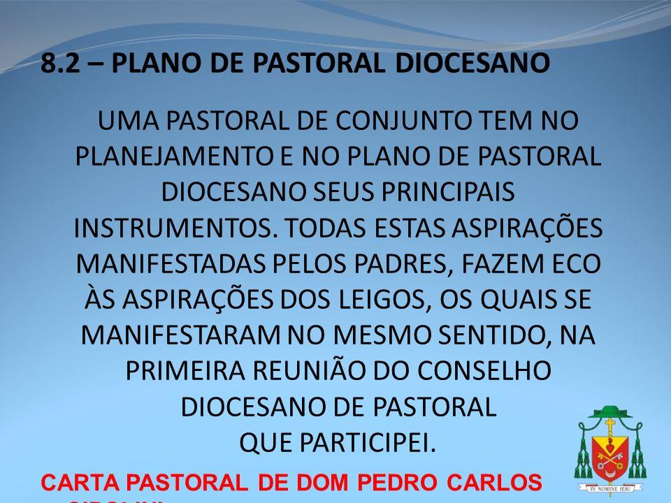 8.2 – PLANO DE PASTORAL DIOCESANO