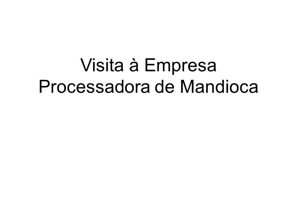 Visita à Empresa Processadora de Mandioca