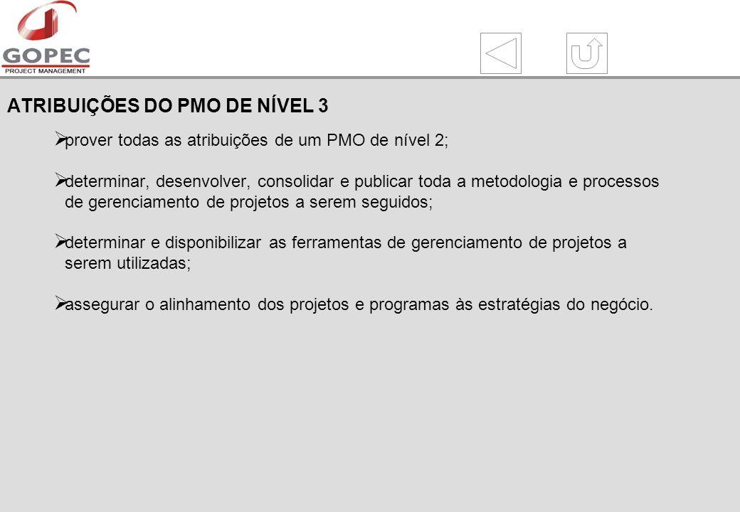 ATRIBUIÇÕES DO PMO DE NÍVEL 3