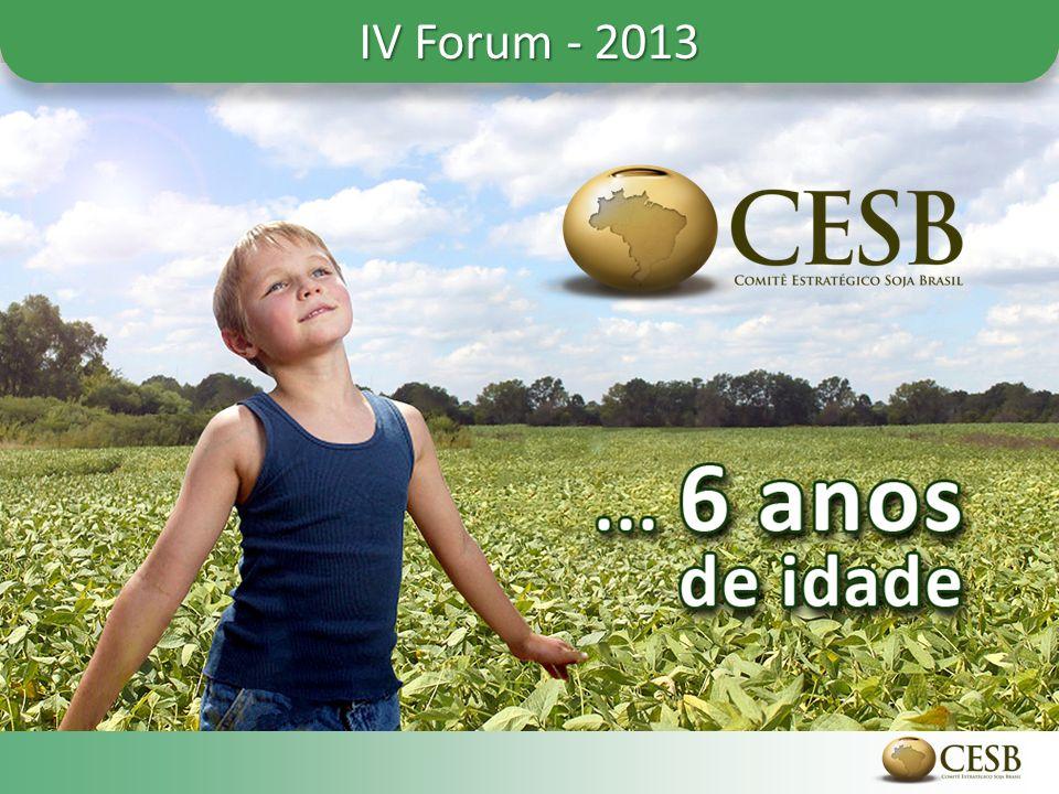 IV Forum - 2013