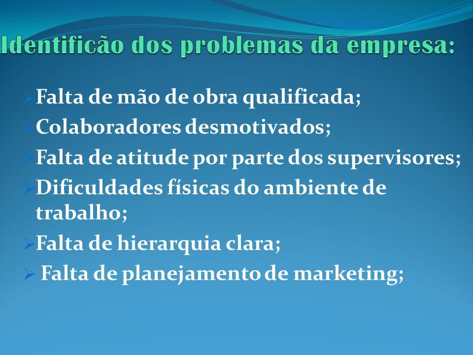 Identificão dos problemas da empresa: