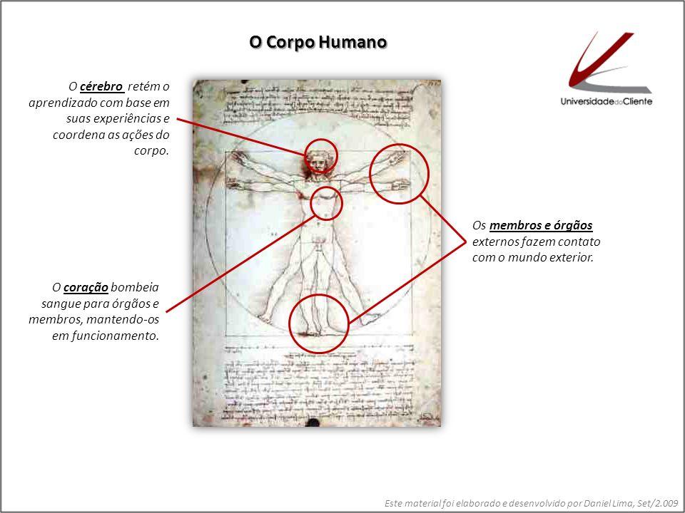 O Corpo Humano O cérebro retém o aprendizado com base em suas experiências e coordena as ações do corpo.